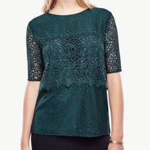 Ann Taylor Green Mixed Lace Crochet Blouse Large